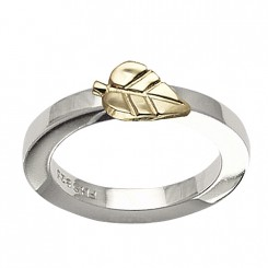 Possibilities ring, blad