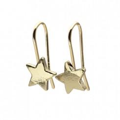 Possibilities stjerne øreringe 14 karat guld