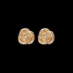 Roses of Love FG