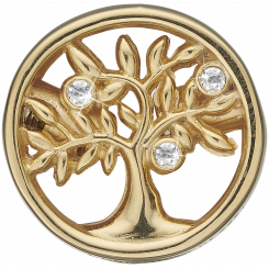 Connections Tree of Life FG