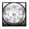 Ægte hvid Diamant