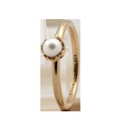 Pearl Flower 2,2